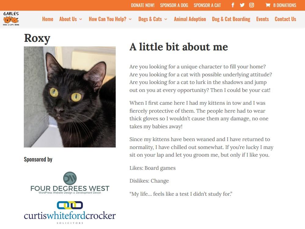 Custom WordPress Cats Home Plugin